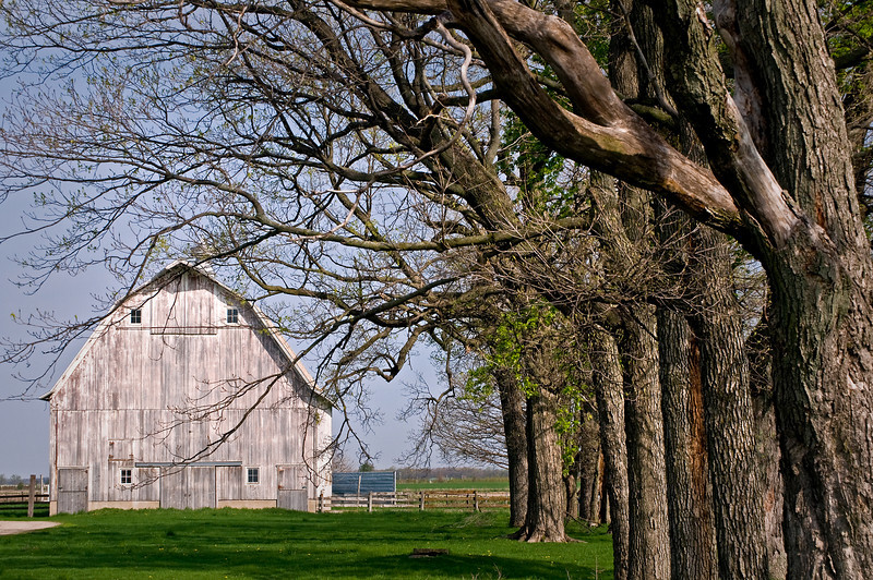 RL 004                      A regal old barn in a beautiful country setting, Kendall County, IL.