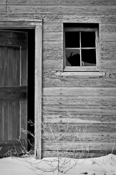 RL 032                      An old entrance into one of the many weathered barns at the former Saddlebrook Farm near Grayslake, IL.
