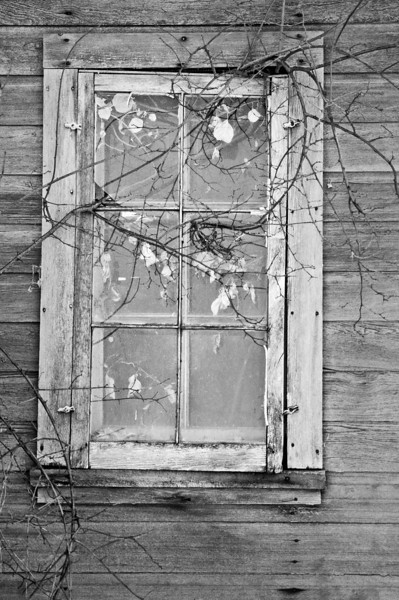 RL 034                        Window detail in one of the weathered outbuildings at Saddlebrook Farm near Grayslake, IL.