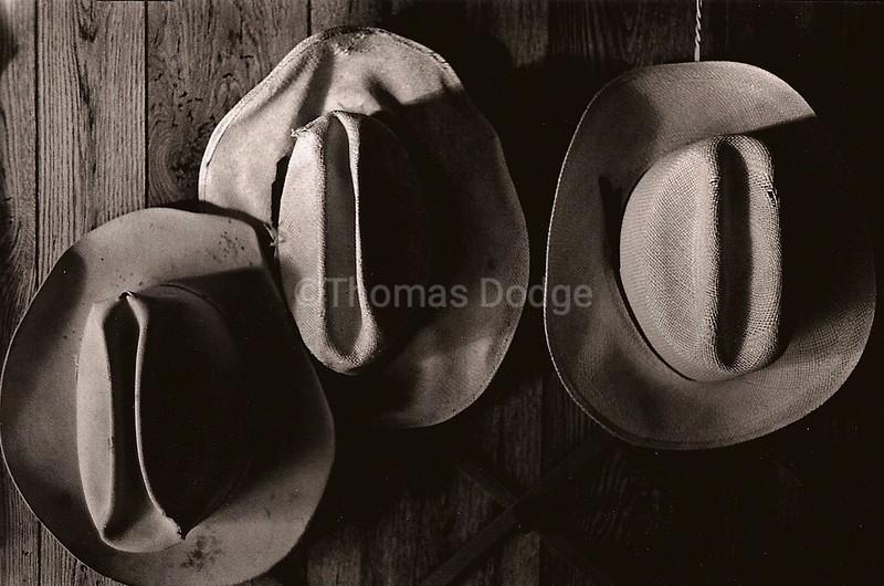 Cowboy Hats, AZ, 1993