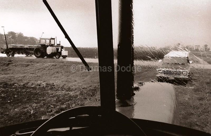 Spring Rain, Truman, MN, 1983