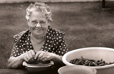 Grandma Minnie Shucking Peas, Truman, MN 1978