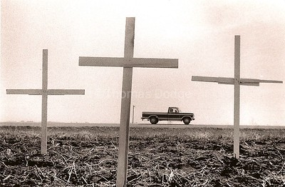 Roadside crosses. Click on photo for enlarged, clear view.