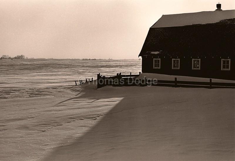 Hog house, January, Truman, MN, 1983
