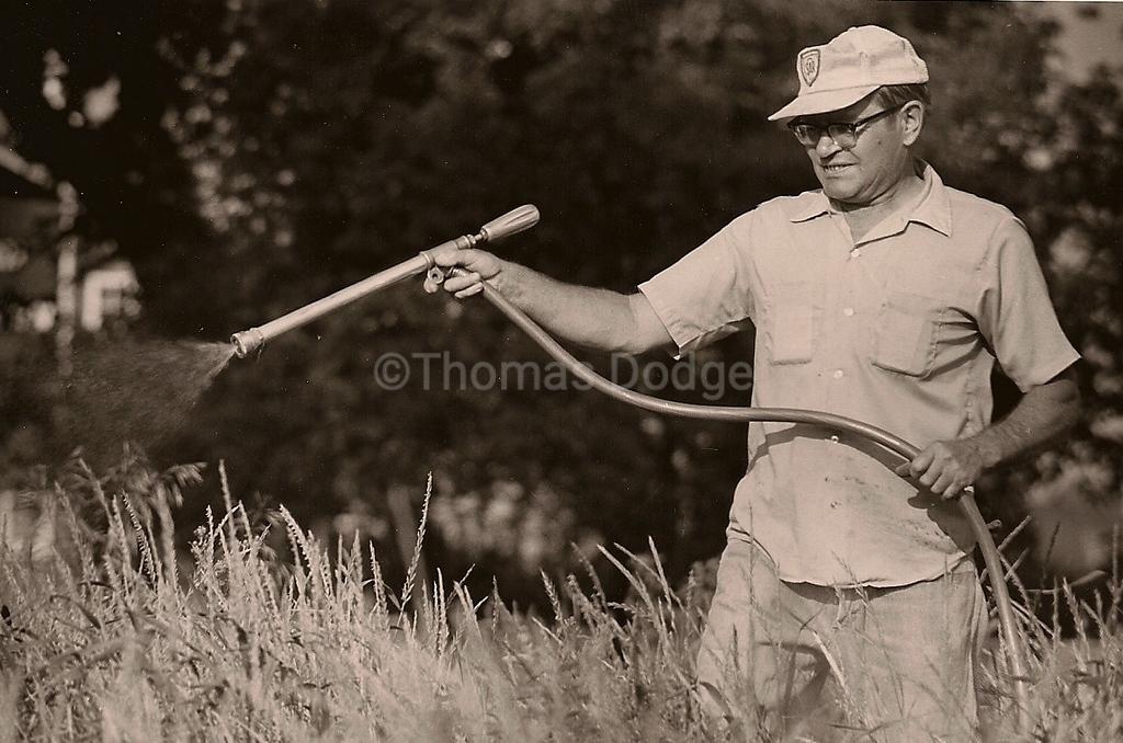 War on Weeds, Truman, MN, 1982
