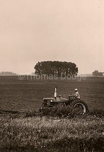 Summer Cultivating, Truman, MN, 1982