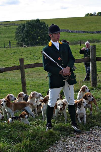 Chilmark Beagles