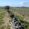 Mendip Dry Stone Walls before repair