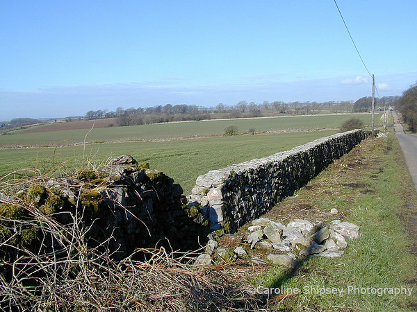Mendip Dry Stone Walls after repair