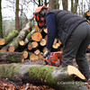 Collette cutting wood into lengths