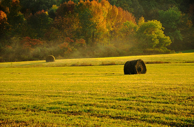 Round Hay Bales in Montgomery County, New York