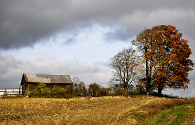 Abandoned Barn On Top of A Hill, Montgomery County.