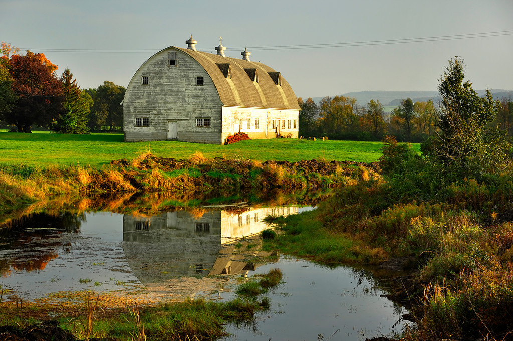 The Old Barn and The Pond.