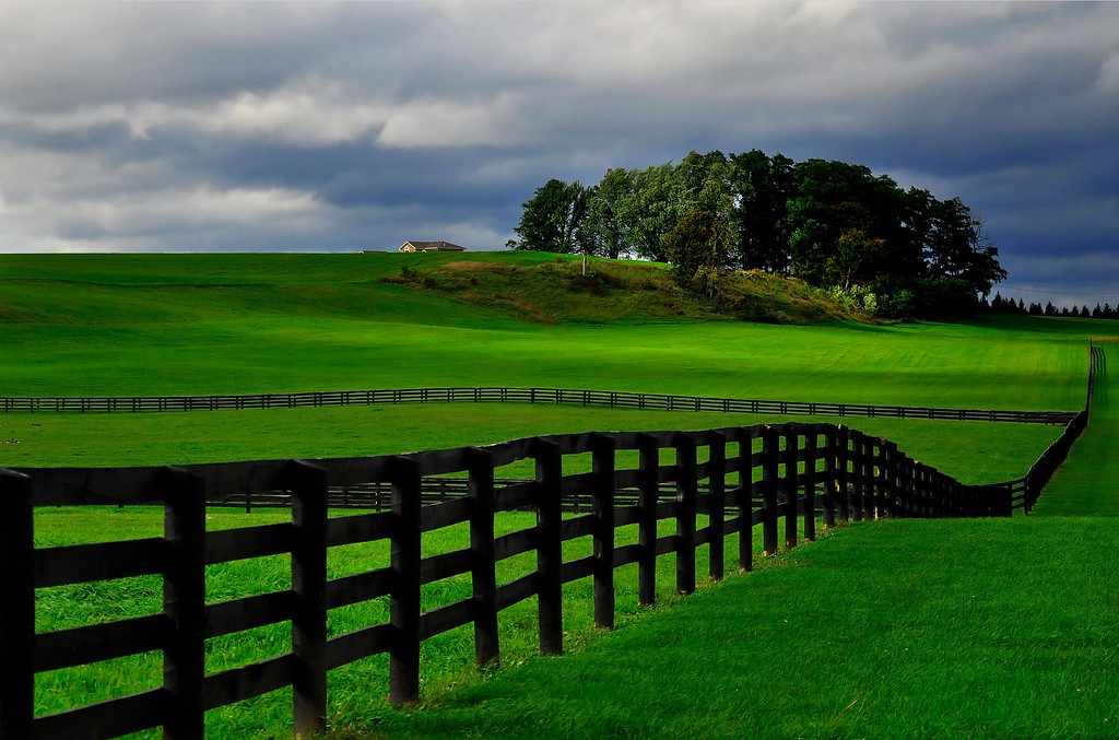 The Wooden Fences of a Horse Farm in Saratoga County, NY.