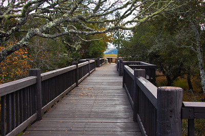 bridge-walkway