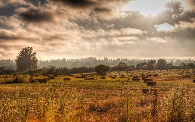 hay-bales-pasture