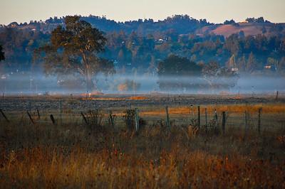 fog-pasture-hill-2