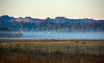 fog-pasture-hill