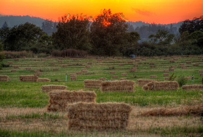 rural-hay-sunset-2
