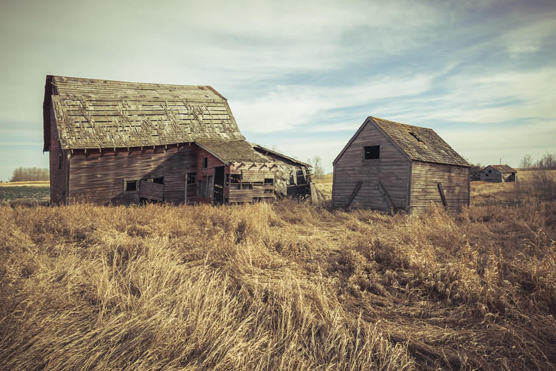 Abandoned Farm Near Vegreville