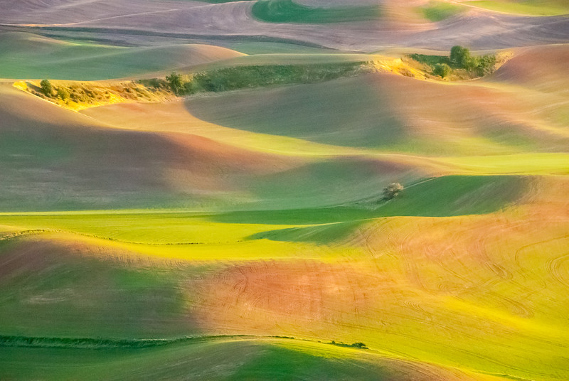 Palouse Sunset Glow