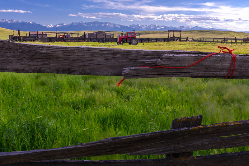 Fence and Red Tractor