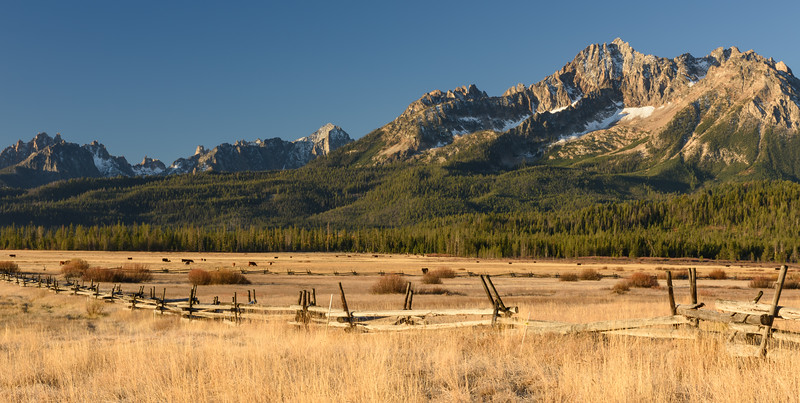 Sawtooth Fenceline