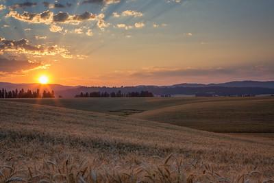 August 1 (Peone Sunrise) 091-Edit-2