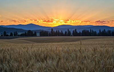 July 18 (Peone sunrise) 046-Edit-3