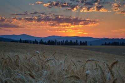 August 1 (Peone Sunrise) 042-Edit