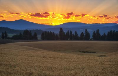 July 18 (Peone sunrise) 032-Edit-5