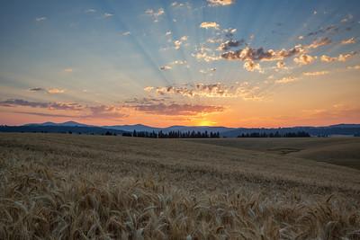 August 1 (Peone Sunrise) 054-Edit-2