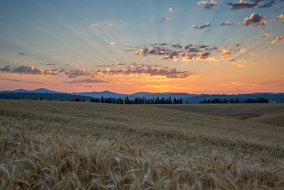 August 1 (Peone Sunrise) 030-Edit-2