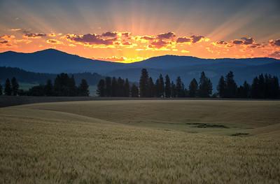 July 18 (Peone sunrise) 031-Edit-5-2