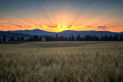 July 18 (Peone sunrise) 042-Edit-4