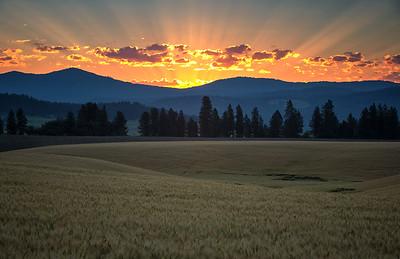 July 18 (Peone sunrise) 032-Edit-6-2