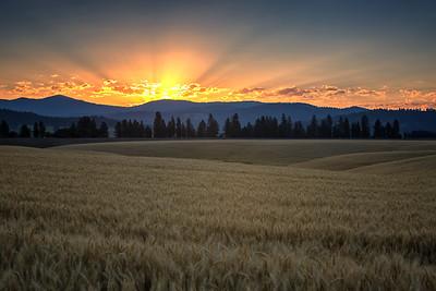 July 18 (Peone sunrise) 059-Edit-5-2