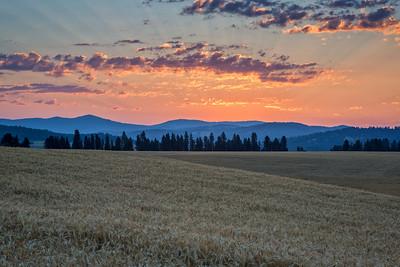 August 1 (Peone Sunrise) 023-Edit-2