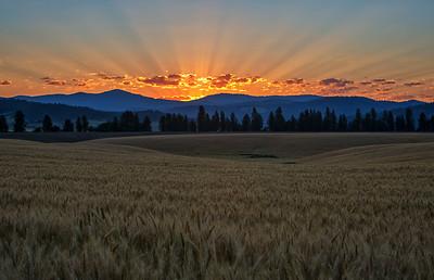 July 18 (Peone sunrise) 037-Edit-4