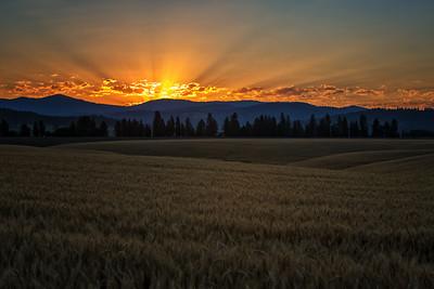 July 18 (Peone sunrise) 059-Edit-2