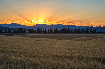 July 18 (Peone sunrise) 059-Edit-3
