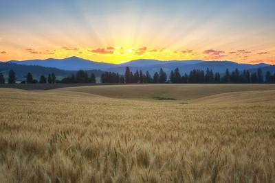 July 18 (Peone sunrise) 040-Edit-2-2