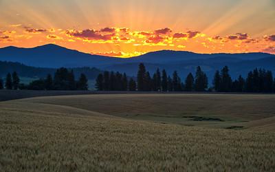 July 18 (Peone sunrise) 031-Edit-3