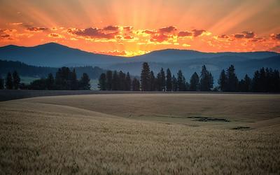 July 18 (Peone sunrise) 032-Edit-3