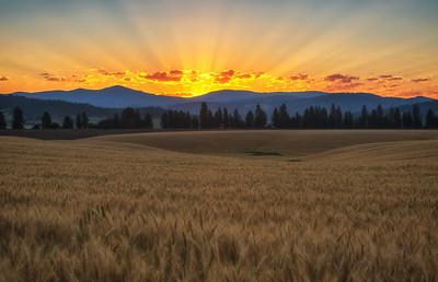 July 18 (Peone sunrise) 037-Edit-5
