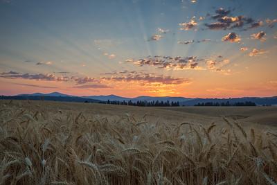 August 1 (Peone Sunrise) 038-Edit-2