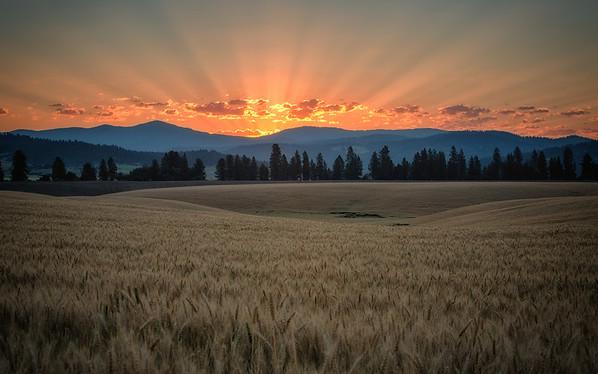 Rural Spokane