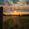 August 28 (Lavender Lark Sunrise) 115-Edit