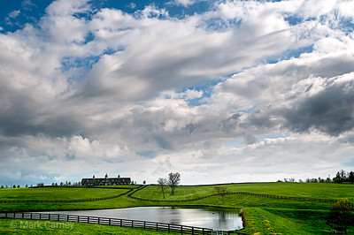 woodford farm 3