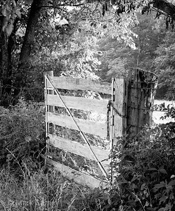 white farm gate